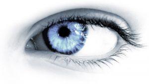 Atelier Yoga des yeux Cambium Ayurvéda